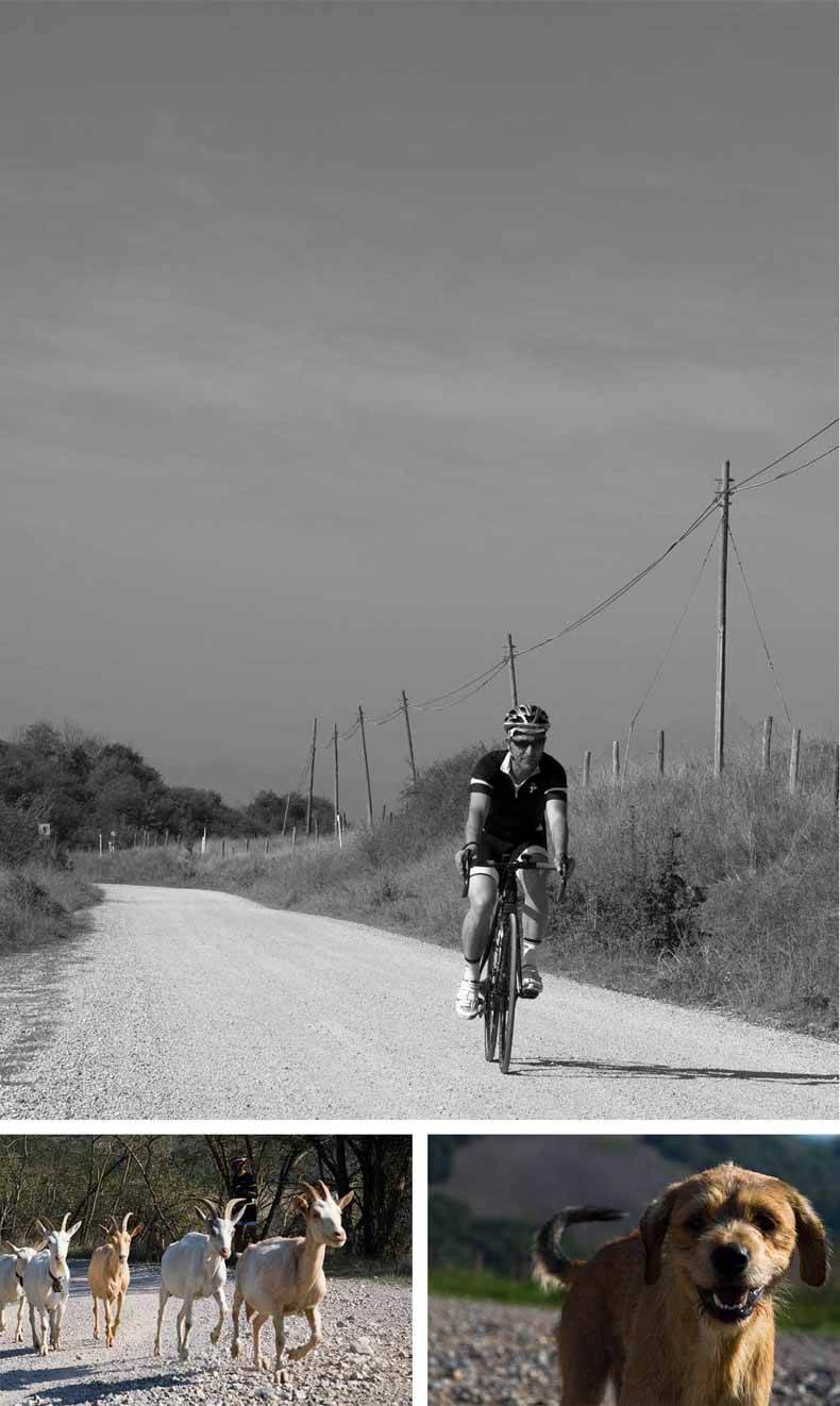 A collage of photos from a cycling holiday in Tuscany